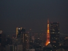 The Tokyo Tower by night